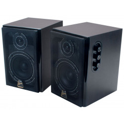 Swans D1010MKII Active Monitor Speaker System